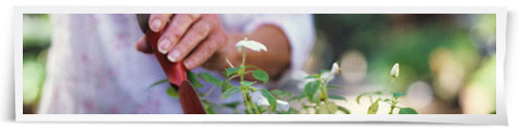 Gardening professionals service finder