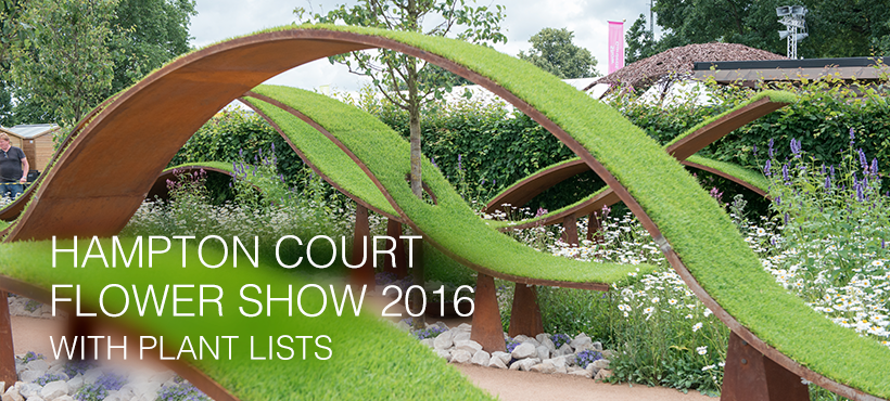 RHS Hampton Court Flower Show 2016
