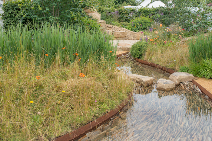 Zoflora: Outstanding Natural Beauty Garden RHS Hampton Court Flower Show 2016