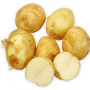 'Maris Peer' is a perennial forming branching stems with compound leaves, white flowers, green berries, and edible, swollen tubers, which are harvested in the early summer. This is a second early variety producing oval, new potatoes with white flesh. Solanum tuberosum 'Maris Peer' added by Shoot)