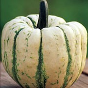 'Sweet Dumpling' is a good variety of squash producing many small, rounded, white with green striped vegetables with good flavour in autumn. Cucurbita pepo 'Sweet Dumpling' added by Shoot)