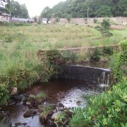 Stream at foot of wildlife meadow garden Added by Emma Plunket
