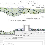 Part of planting design for new borders Added by Belinda Macdonald, Shades of Green