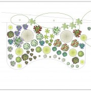 Planting plan for perennial/grass border Added by Belinda Macdonald, Shades of Green