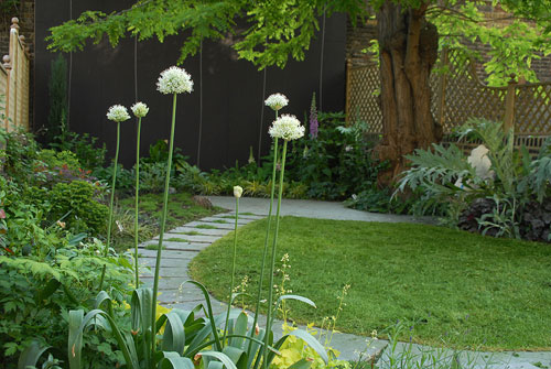 Serene contemporary garden design in fulham josh ward
