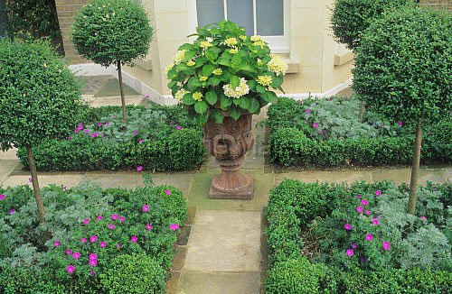 Traditional garden and parterre - Shoot