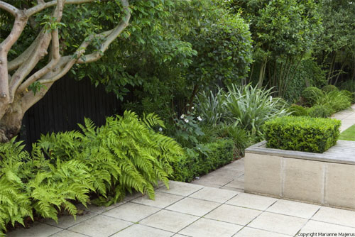 A calm garden for a london family shoot for Garden design planting schemes