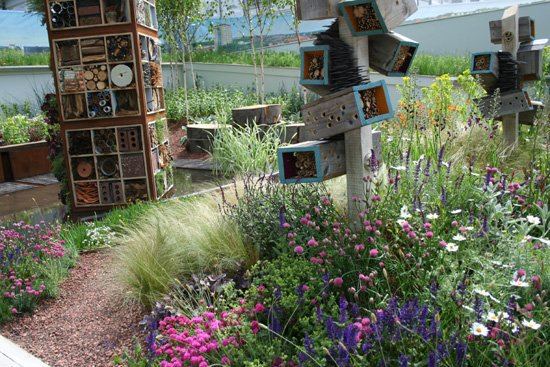 Future nature - chelsea flower show 2009