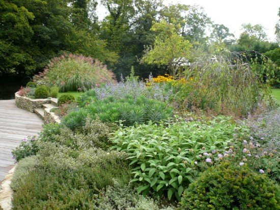 Cotswold garden by london garden designer claudia de yong