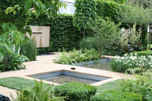 The reflective garden shoot for Structural plants for small gardens