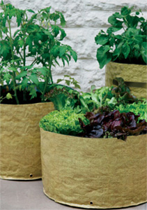 Vegetable patio planter