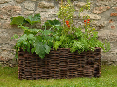 Wicker vegetable planter container