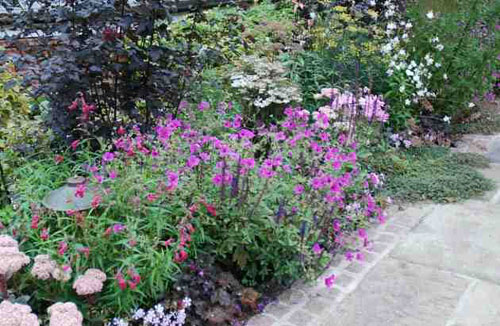 traditional english country garden alice bowe - English Country Garden Design