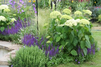 The angel garden shoot for Grasses planting scheme