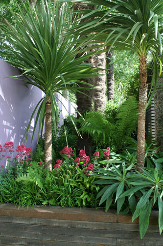 The Cancer Research UK Garden Chelsea Flower Show 2011 by garden designer Robert Myers