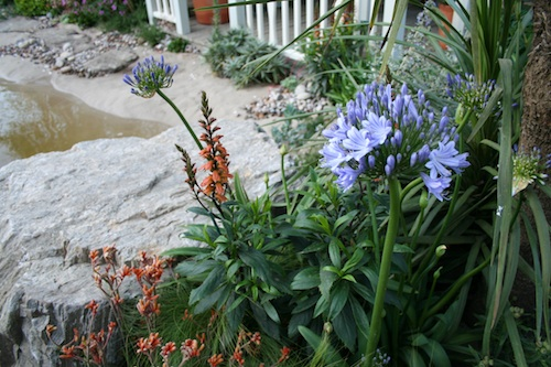 From the Moors to the Sea Garden