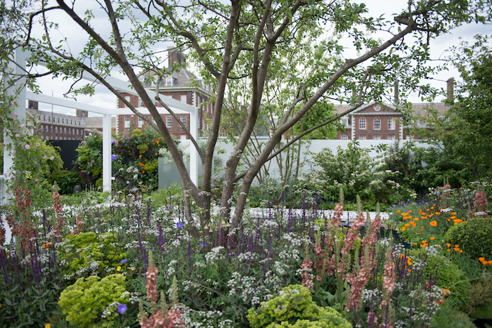 The Watahan East meets West Garden RHS Chelsea Flower Show 2016