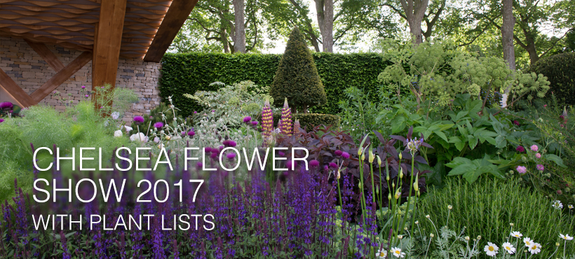 Chelsea Flower Show 2017 - gardens with plant lists