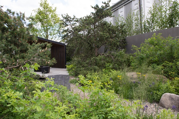 Royal Bank of Canada Garden by garden designer Charlotte Harris