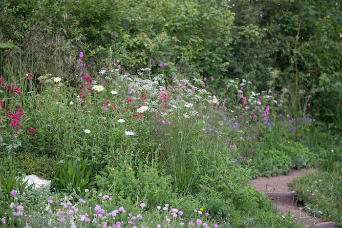 Welcome to Yorkshire Garden by garden designer Tracy Foster