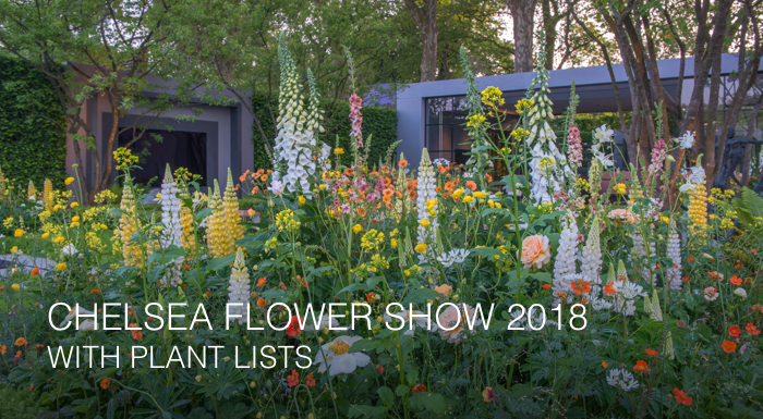 RHS Chelsea Flower Show with Plant Lists 2018