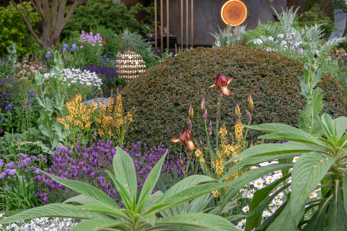 The Morgan Stanley Garden by garden designer Chris Beardshaw Chelsea Flower Show 2019
