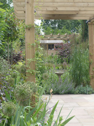 Sloping Long And Thin Garden Shoot