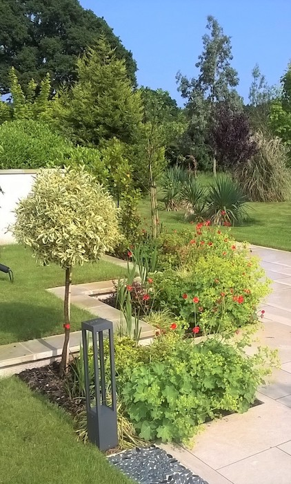 Luxury Living Garden by Sussex based garden designer Anna Helps