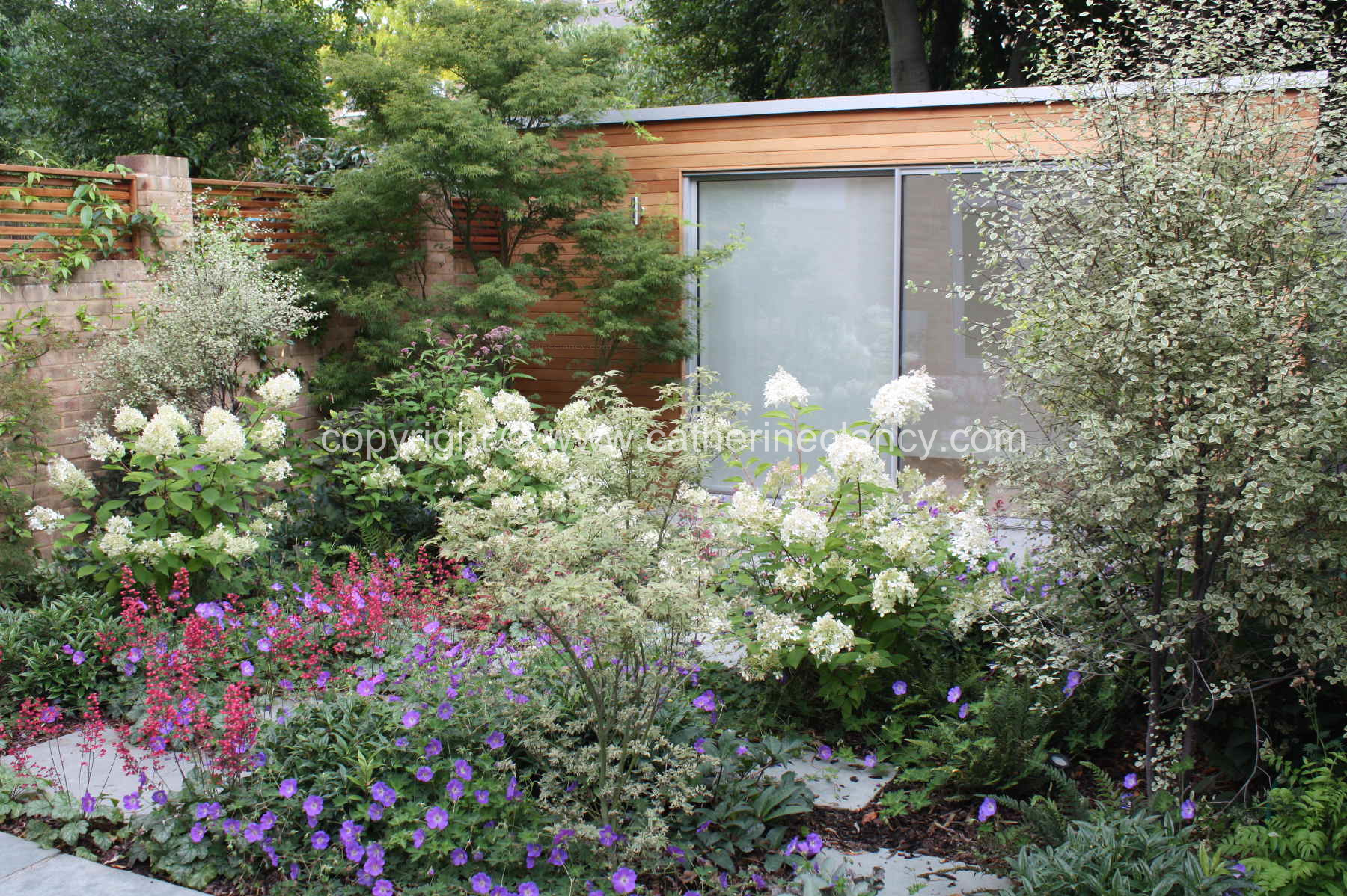 Artist Studio Garden By Blackheath based garden designer Catherine Clancy MSGD