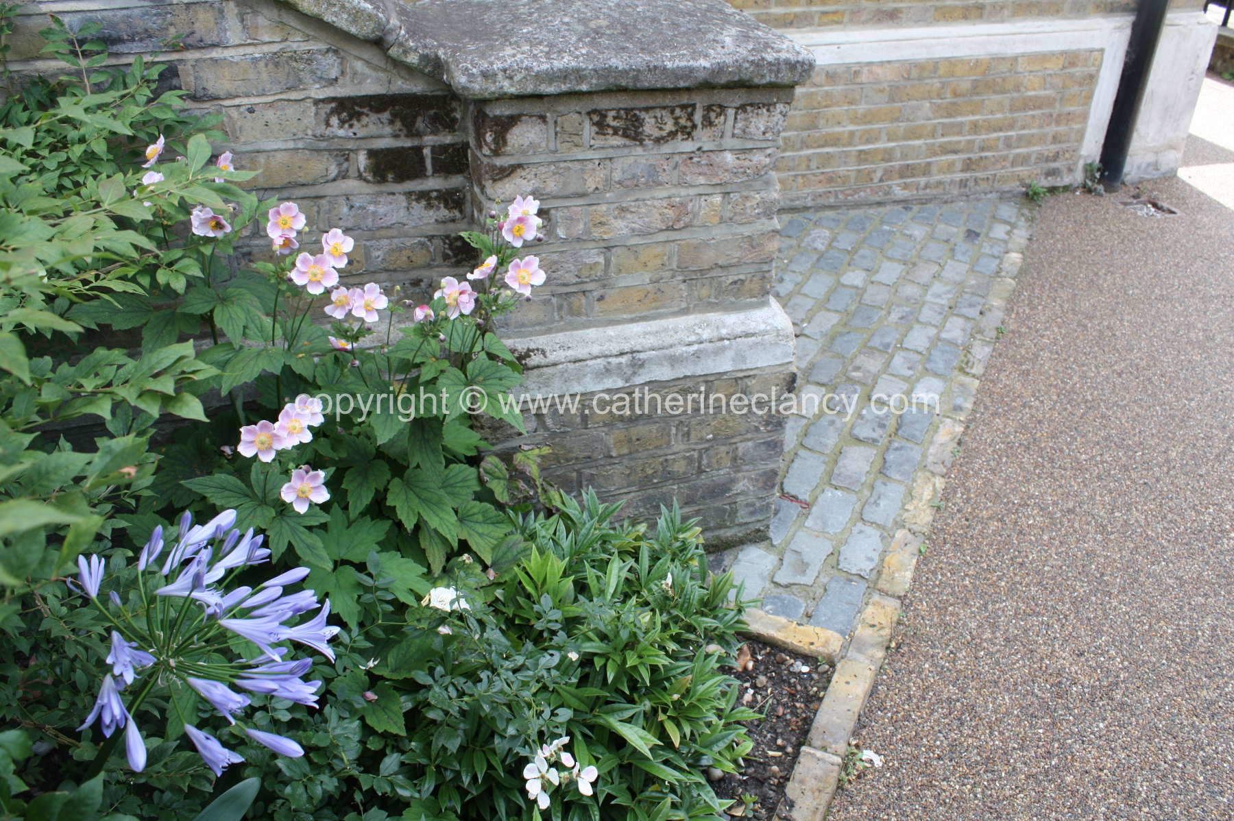 London courtyard front garden by Blackheath based garden designer Catherine Clancy MSGD