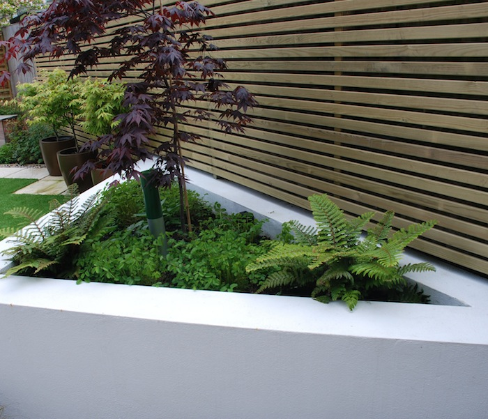 Raised rendered planting beds