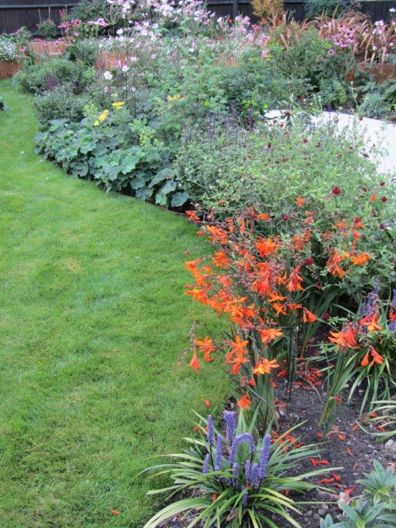 Informal planting curves around the lawn