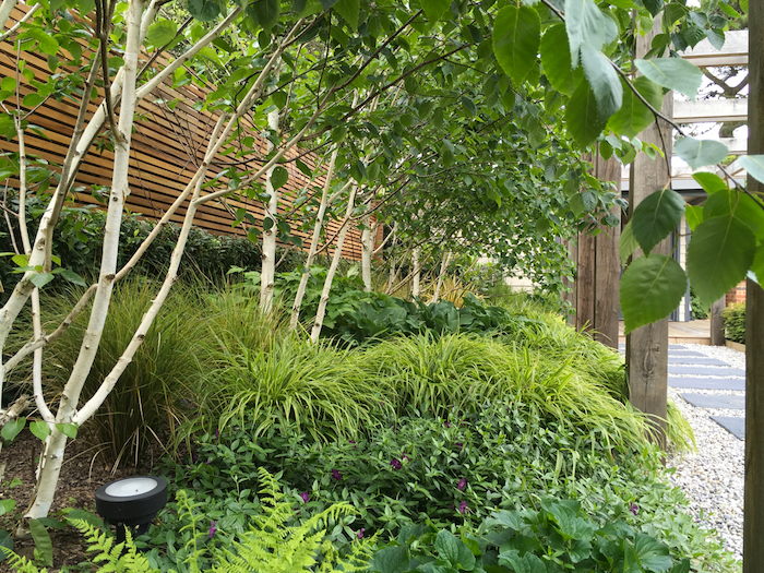 Pelorus – A bespoke contemporary coastal garden for all seasons by Chichester based garden designer David Loy of Your Garden Design