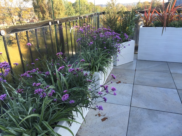 East Barnet Roof Terrace Garden Designed by Gillie Leaf Garden Design