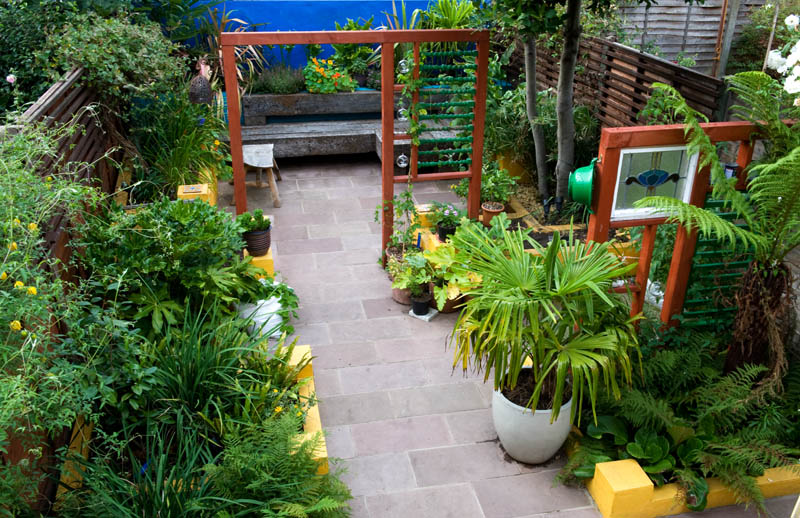 Mexican garden in east london shoot for Garden design east london