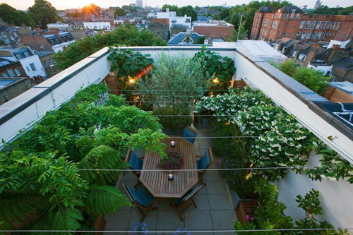 Chelsea roof garden courtyard and terrace shoot for Rooftop garden designs