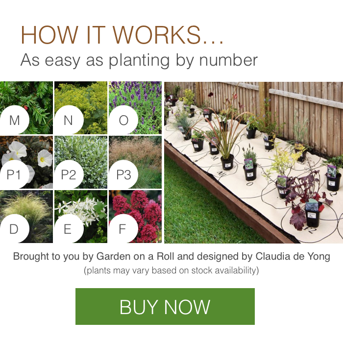 How it works - get the look Barn Conversion garden