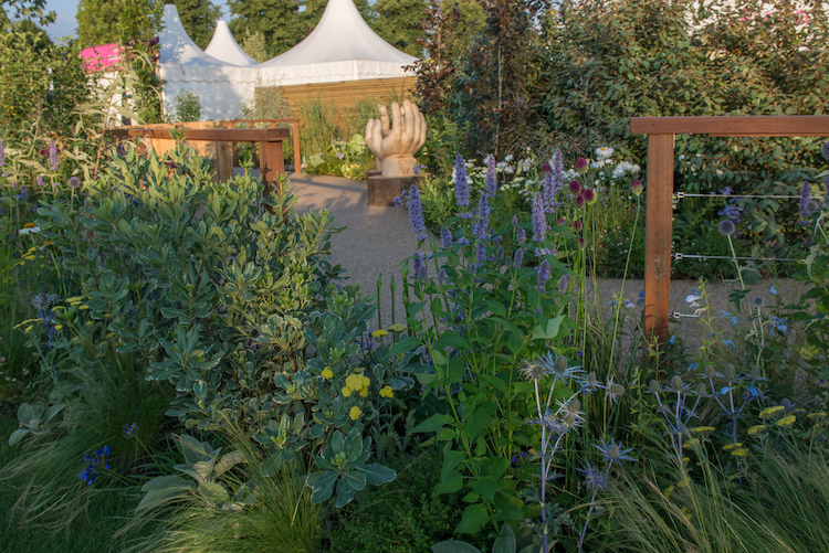 The Limbcare Wellbeing Garden Hampton Court Flower Show 2018 by landscape designer Edward Paul Mairis