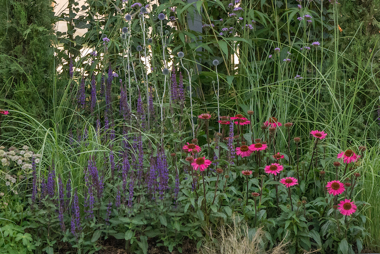 Secured By Design Garden Hampton Court Flower Show 2018 by garden designers Lucy Glover and Jacqueline Poll