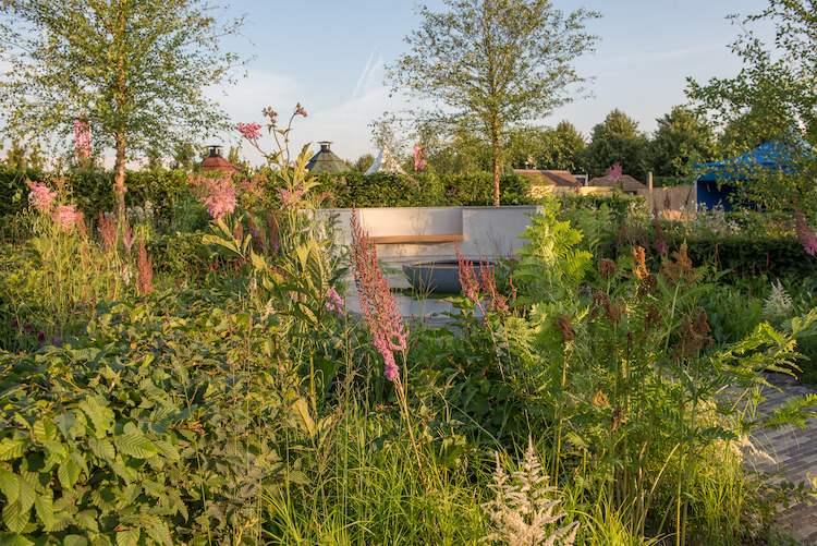 The South West Water Green Garden Hampton Court Flower Show 2018 by Devon garden designer Tom Simpson
