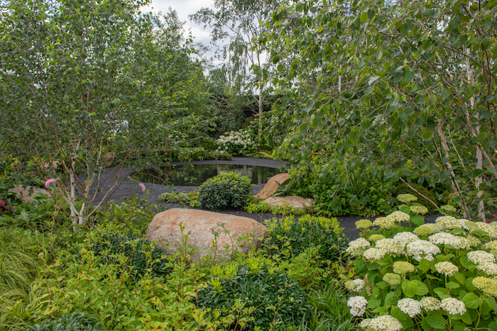 Smart Meter Garden RHS Hampton Court Flower Show 2019 by garden designer Matthew Childs