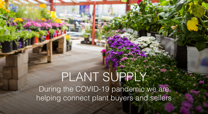 Plant delivery and supply during the Coronavirus (COVID-19) pandemic
