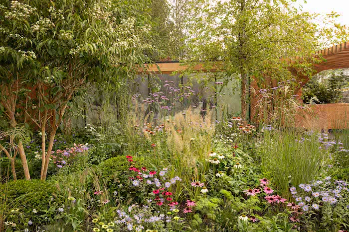 Chelsea Flower Show 2021: Show gardens: The Florence Nightingale Garden by designer Robert Myers