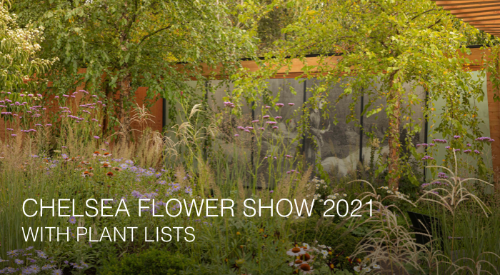 Chelsea Flower Show 2021 with plant lists