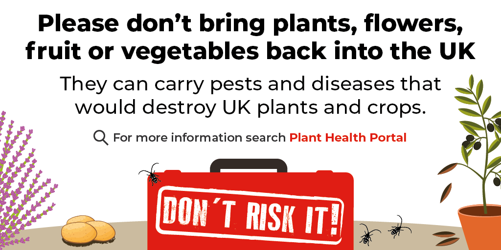 Don't bring plants into the UK
