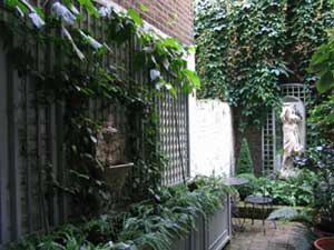 narrow basement garden in pimlico shoot