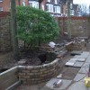 Need help with shade planting under trees, please. (22/01/2012)
