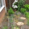 Re: Small damp,part shady,north facing back garden!!